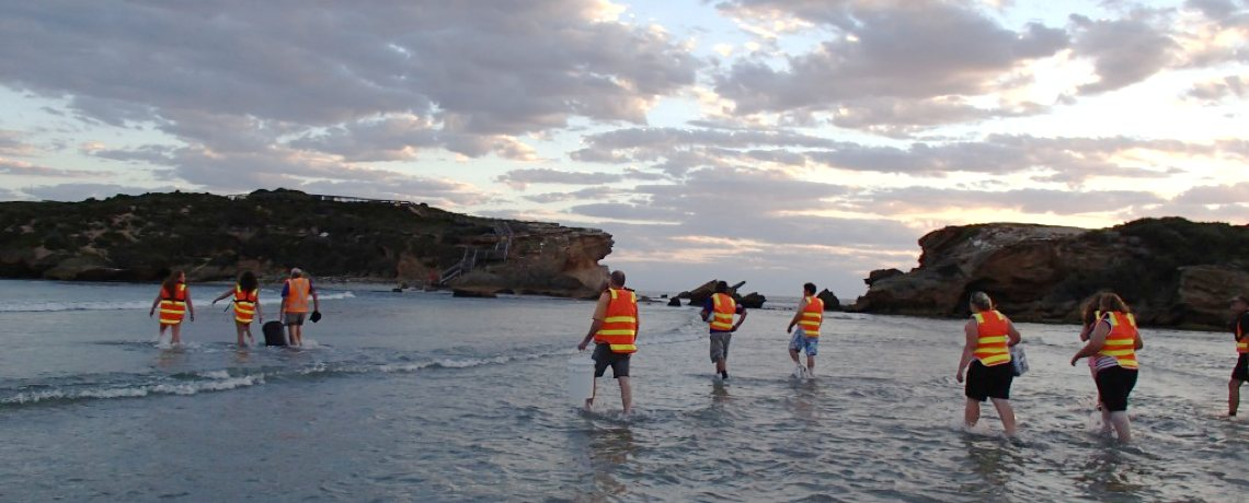 volunteers-middle-island
